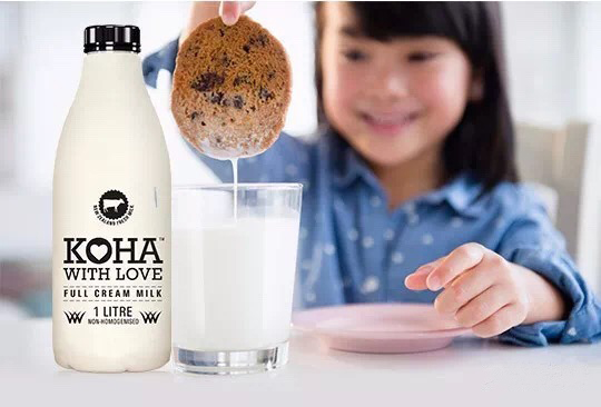 New Zealand's fresh milk entered pre-schools in China
